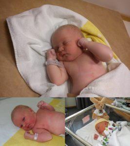 Nyfödd liten Juvis.
